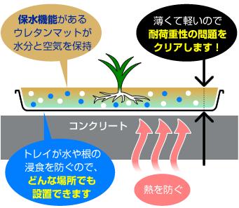 トレイが水や根の浸食を防ぐので、 どんな場所でも設置できます