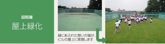 屋上オクシバ緑化例