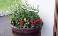 施工例:花壇